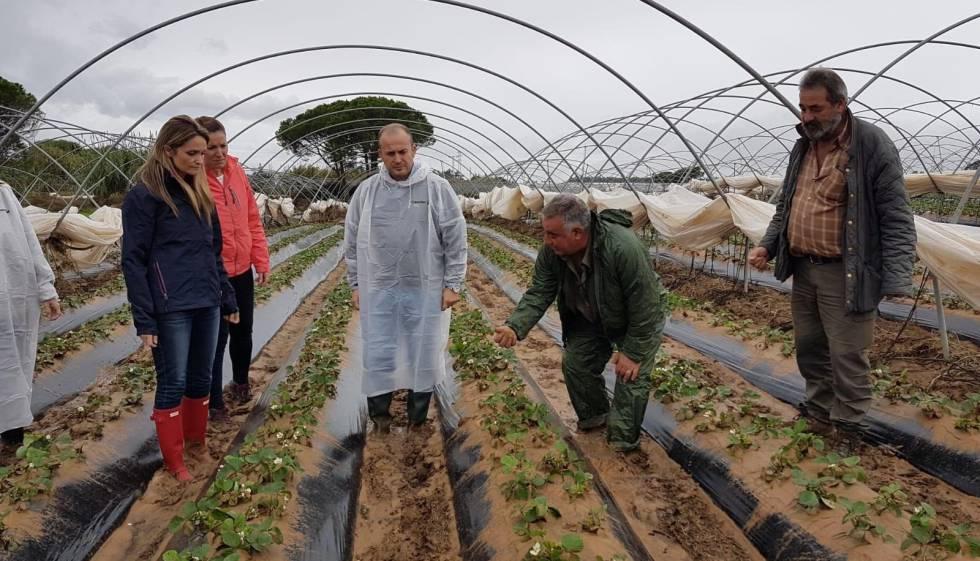 Debemos cambiar el modelo agrícola