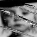 Los delitos sexuales contra menores podrían no prescribir hasta que la víctima cumpla 50 años