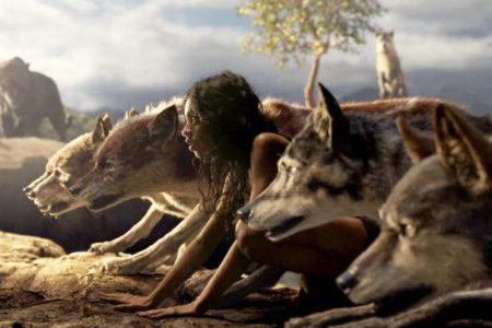 Tras los pasos salvajes de Mowgli