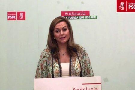 """El PSOE pide a Ciudadanos que """"escuche a Valls"""" para evitar un acuerdo con VOX"""