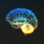 Blue Brain: un plan contra el alzhéimer