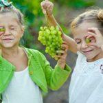 La muerte evitable del niño de tres años de Gijón: no debería haber tomado uvas