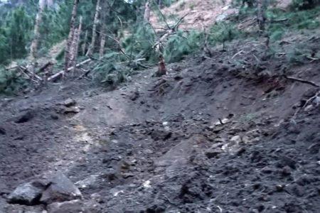 India bombardea territorio paquistaní en respuesta por el atentado que mató a 44 militares hace dos semanas