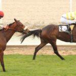 Gran victoria de Udalla en el Premio Atlántida