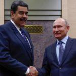 El oso de papel en Venezuela