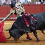 Victorino, ¡el toro!