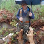 Los cazadores piden un reparto equitativo de responsabilidades en el exceso de población