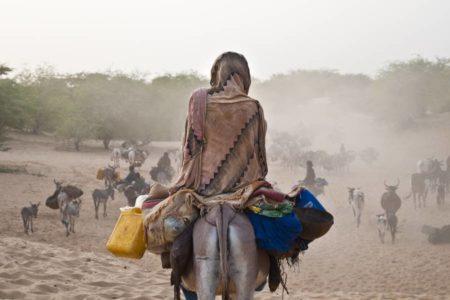 Un centenar de muertos en una masacre en el centro de Malí