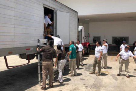 Detenidos en el sur de México cerca de 800 migrantes que viajaban en la zona de carga de cuatro camiones